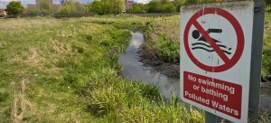 The Moselle River in Haringey suffers from sewage pollution, like many in London
